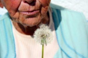 SECPLA, cuidados paliativos en andalucia